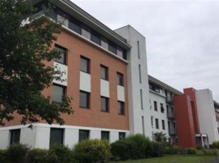 LEUVEN : 3 immeubles de bureaux générant des revenus locatifs importants (Ref. 19EV-HE)<br /> • Prix : 8 M€