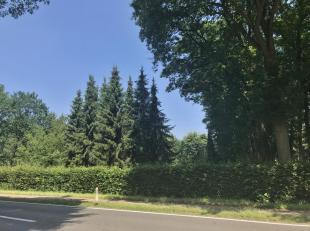 Uitzonderlijk groot, prachtig en groen gelegen villaperceel te Oud-Turnhout met een oppervlakte van4.146 m² en perceelsbreedte van58,58 m vooreen