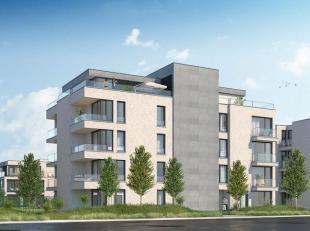 """residentie """"Noordrijk"""" omgeven door zijn prachtige tuin, Is gelegen aan de N78 en de Noordstraat te Maasmechelen, op wandelafstand van het centrum, sc"""