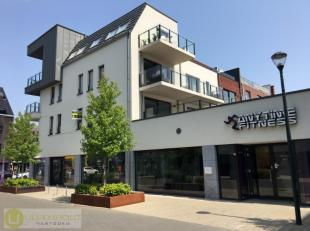 Dit investeringspand ligt in het kernwinkelgebied van het centrum van de gemeente Leopoldsburg en is verhuurd aan Anytime Fitness. Klassiek handelshuu