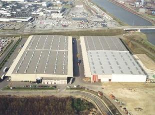 LOGISTIEKE Opslaghallen te Genk-Zuid, nabij Ford en afrit E314. Units v.a. 4.000m² tot 20.000m². Vrije hgt. 9m, Max. vloerbelasting 5T/m&sup