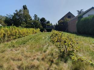 Landelijk gelegen stuk grond in Sint-Lambrechts-Herk, op een steenworp van het centrum van Hasselt. Prachtige open bebouwing van +- 6 are. Ondanks de