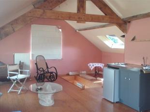 Studio meublé aménagé sous les combles, dans une villa... Clos bucolique au calme, proximité bus De Lijn, gares, tram 51 e