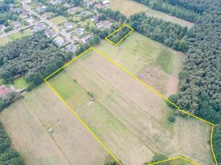 WEIDE VAN 3HA IN LANAKEN!<br /> <br /> Deze gronden/weilanden zijn gelegen in een residentiële wijk te Lanaken. <br /> De gronden zijn gelegen tu