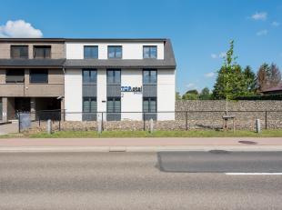 Bedrijfspand ingericht als Kamerhotel met Wellness gelegen te Hasselt, Sint-Truidersteenweg 381A.<br /> <br /> Toplocatie aan stadsrand van Hasselt, d