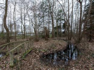 PRACHTIG LANDGOED - BOSGEBIED VAN 52A34CA !<br /> <br /> Ontdek deze groene locatie op de Schuurkensstraat ter hoogte van nummer 73 in Stokrooie (Hass