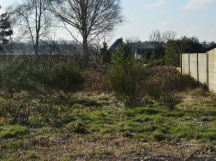 Dit perceel bouwgrond voor halfopen bebouwing kadert in het landschap tussen Essen en Kalmthout. LOT 2 heeft een grondoppervlakte van circa 810 m&sup2