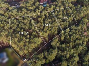 Deze bouwgrond van 32a90ca is gelegen op een toplocatie in het groene Keerbergen.<br /> Bouwvoorschriften te verkrijgen op aanvraag keerbergen@imovast