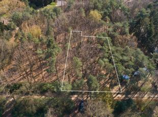 """Perceel bouwgrond gelegen in bosrijk gebied """"Heikant"""" te Rotselaar.<br /> Gelegen aan een doodlopende straat in woonpark zone.<br /> Zuid gerichte tui"""