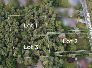 Deze bouwgrond gelegen in een woonpark nabij het meer van Keerbergen is geschikt voor een open bebouwing.Het perceel bedraagt 31a18ca, met een breedte