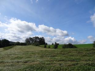 Op de rand van de Condroz en de Ardennen, ligt Aywaille op zo'n twintig kilometer ten zuiden van Luik, vijftien kilometer van Spa en zestig van Bastog
