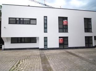 Deze moderne villa is gelegen in de Rootenstraat 3 in Genk, pal in het centrum van Genk. Alles bevindt zich werkelijk op wandelafstand zoals het bruis