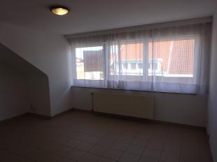 Volledig vernieuwd appartement in kleine residentie (2de verdiep) met veel lichtinval en rustig gelegen (dubbele beglazing PVC) - living (19m) - hyper