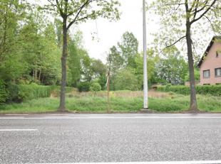 Mooi perceel bouwgrond van 5a32 gelegen in een residentiële omgeving op ongeveer 500 m van de dorpskern van Wimmertingen en op 3 km van de grote