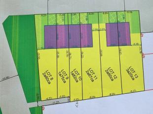 Projectgrond: Gulden Bodem 4 loten te koop als stadswoningen in Sint-Truiden.<br /> <br /> De totale perceelsoppervlakte van de 4 loten bedraagt 9a26c