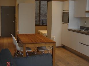 Appartement met zicht op MAS. Woonkamer met open ingerichte keuken, zitplaats met zetel en televisie, Berging /techn ruimte, toilet, slaapkamergedeelt