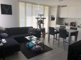 TE HUUR<br /> Appartement met 2 slaapkamers en groot terras, gelegen op een zeer rustige locatie in het centrum van Diepenbeek op de Pelserweg.<br />