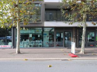 Dit multifuncitonele handelspand kan u terugvinden aan de Koudebergstraat in het commerciële centrum van Maasmechelen. Vlakbij shoppingcenter M2,