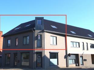 Ruim, recent appartement met 3 grote slaapkamers, terras en bijhorende parkeerplaats op een gunstige ligging nabij het centrum van Beringen.  Dit appa