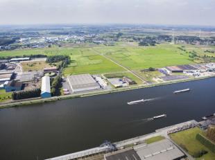 """Deze industriegrond is gelegen in de zone voor kleinebedrijven in bedrijventerrein """"Grote Nest"""" in de haven van Gent. De volledige site is ongeveer 67"""