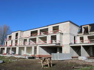 De ligging van dit project is de grootste troef! Het is gelegen in hetcentrum van Waardamme en dit met een mooi, groen uitzicht, en toch vlakbij winke