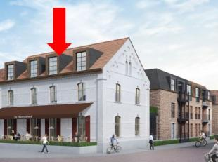 Nieuwbouwproject 'De Heerlyckheid' verrijst in het centrum van Bocholt op de oude site van de kleuter- en lagere school, tussen de Kerkhofstraat, Kloo