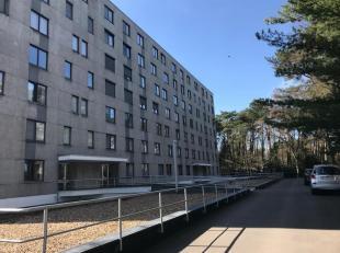 Grote inkomhal met inbouwkasten (+/- 2,5 x 4,6m), ruime woonkamer met toegang tot het terras (+/- 5 x 7,2m), moderne geïnstalleerde keuken (induc