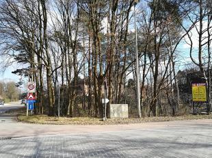 Sledderloweg / Daalstraat - Mooi gelegen hoekperceel van 8a 08ca, geschikt voor een open bebouwing.  Het perceel is zeer goed gelegen op de hoek van d