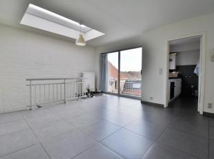 Appartement duplex au rez-de-chaussée - bien situé et entièrement rénové - dans le centre dOverijse - offrant une s