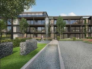 Het project Franse Bos in Genk is met zijn unieke bouwvorm en inplanting bijzonder vernieuwend. U betreedt het domein via een houten toegangspoort die