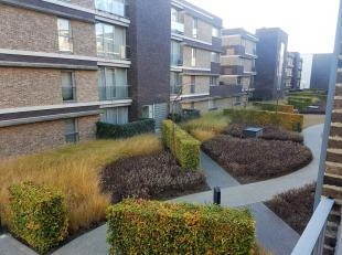 """""""Een Ruim appartement met een uniek terras, een oase van groen, rust, privacy en comfort en dit alles in het hart van Genk.Drukte en Kalmte in &eacute"""
