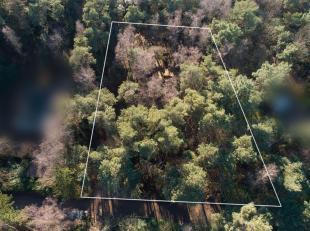Dit perceel grond met een breedte van 38 m heeft een oppervlakte van 2.692 m². Ideale oriëntatie, naar het zuidwesten ! Voor het ogenblik wo