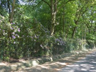 Op wandelafstand van de Royal Golf Club van Kapellenbos treft men deze bouwgrond in woonparkgebied. Men kan er een villa bouwen met een bouwoppervlakt