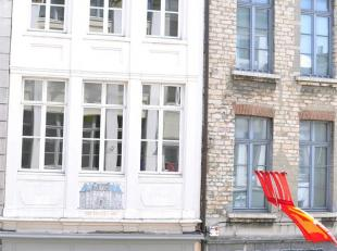 """Prachtig en kwalitatief gerenoveerd eigendom op centrale ligging op wandelafstand van centrum Mechelen. Het pand werd gebouwd in 1647 (""""Rooden hond"""")"""