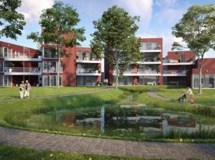 La Peregrina is een serviceresidentie bestaande uit 24 moderne, erkende en stijlvolle assistentie woningen.<br /> Alle appartementen zijn omgeven door