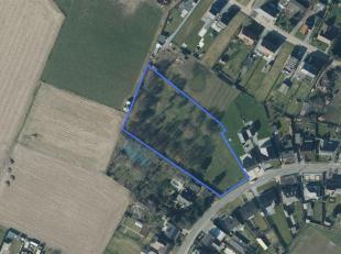 Deze villa-bouwkavel van 7.996m² is gelegen in een residentiële en landelijke omgeving van Sint-Lambrechts-Herk, deelgemeente van de gemeent