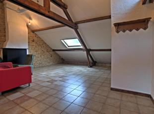 Arlon : Appart 1ch cuis équip cave gren sdb CCM 550euro + 10euro communs. Libre de suite. Frais détat des lieux à prévoir.