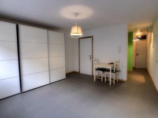 Venez découvrir ce studio idéalement situé dans Arlon, proche des grands axes et des différents commerces. Ce studio de 30