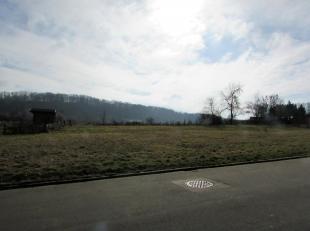 Habergy. Commune de Messancy. Terrain à bâtir d'une superficie d'environ 1656 m². Possibilité de diviser le terrain en 2 parc
