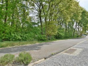 Bouwgrond van 8a 66ca, geschikt voor open bebouwing, residentieel gelegen aan de bosrand van As.De percelen grenzen aan de achterzijde aan natuurgebie