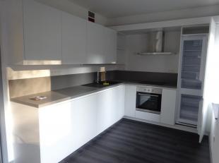 Bel appartement  de 105 m² avec  3 chambres entièrement  rénové au coeur de Mons , living, grande terrasse de 40 m², cu