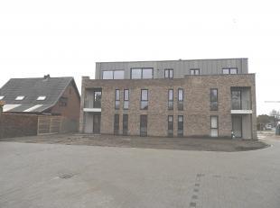 Nieuwe gelijkvloerse studio in Mol Ginderbuiten! De studio omvat een inkomhal, badkamer met douche, berging, keuken en een leefruimte van 33m2.Er is e