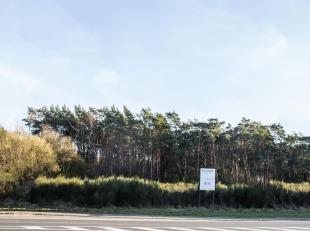 4 bouwgronden HOB in een goedgekeurde verkaveling in het centrum van Lichtaart! LOT 1 met een oppervlakte van 747 m² en een straatbreedte van 15,