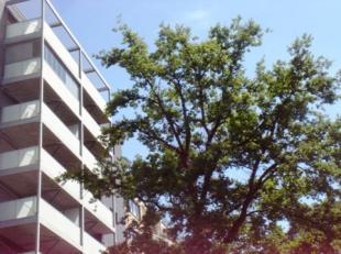 Recent en ruim appartement in Genk-centrum met een panoramisch zicht, voorzien van de volgende kenmerken:<br /> - een optimale natuurlijke lichtinval;