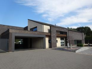 Maison à louer                     à 3620 Lanaken