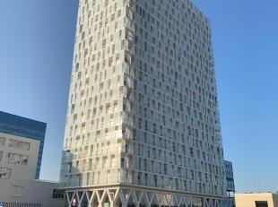 Kot-Colocation à louer                     à 2060 Antwerpen