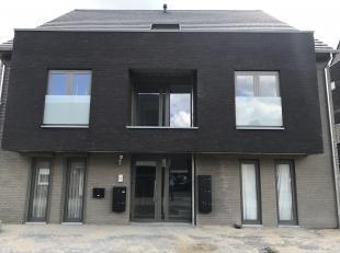 Appartement à louer                     à 3630 Mechelen-aan-de-Maas