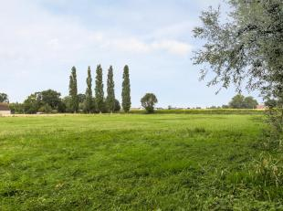 Grond,  momenteel verpacht.  Totale oppervlakte: 2 ha. 26 a. 97 ca..<br /> Deze grond omvat: Weiland : 8 536 m².  Bouwland. 1: 2.001 m². Bou