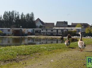RS HOMES Immo verkoopt deze fraaie camping gelegen in het prachtige kasteeldomein, het pareltje van Viane. De camping geniet van een prachtige omgevin