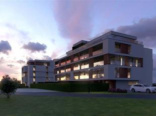 Appartement te koop                     in 3680 Maaseik